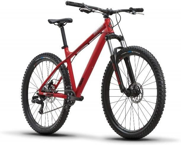 mountain bike for beginner