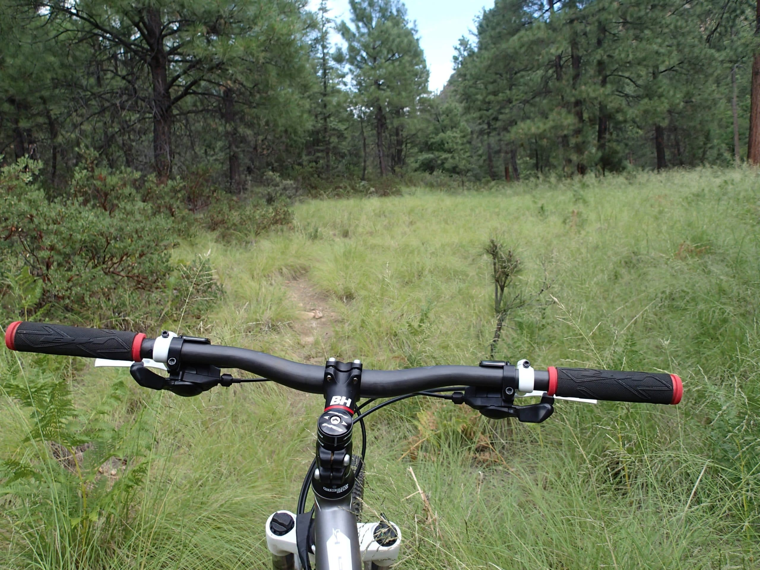 Damping of a Carbon Mountain Bike vs. Aluminum: Image of mountain bike in grass